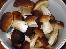 Различные закуски из грибов украшают застолье и с удовольствием поедаются.